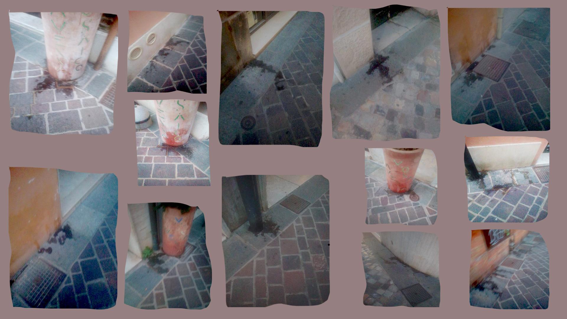 hater mosaic n 7